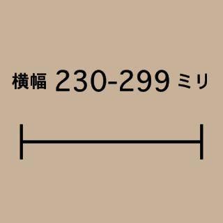 W230-299mm
