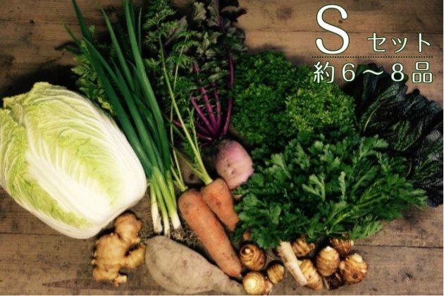 【あまがえる農園の野菜セットS】約6〜8品/送料無料/栽培期間中農薬・化学肥料不使用