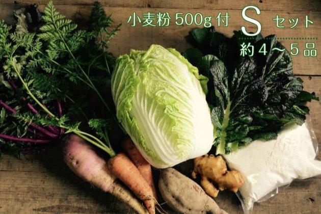 【あまがえる農園の野菜&小麦粉500gセットS】野菜4〜5品/送料無料/栽培期間中農薬・化学肥料不使用