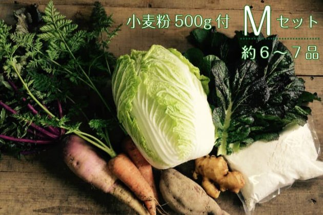 【あまがえる農園の野菜&小麦粉500gセットM】野菜6〜7品/送料無料/栽培期間中農薬・化学肥料不使用