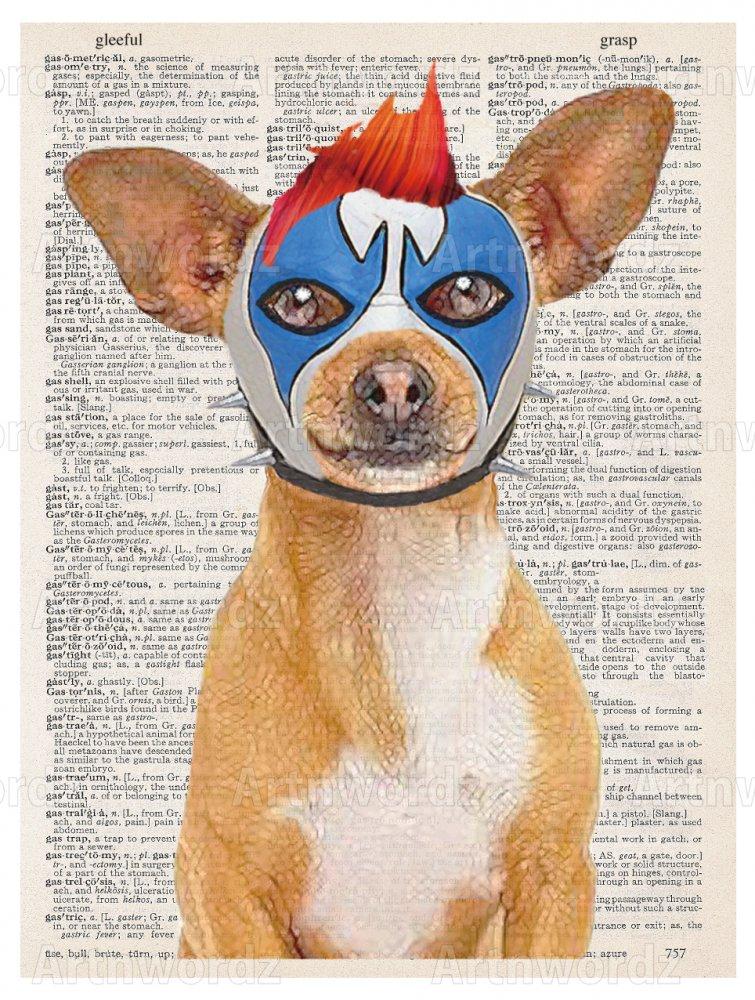 Lucha Dog