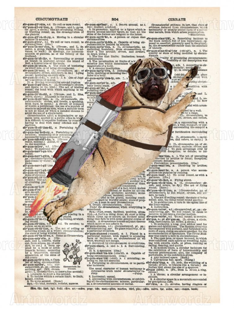 pug rocket
