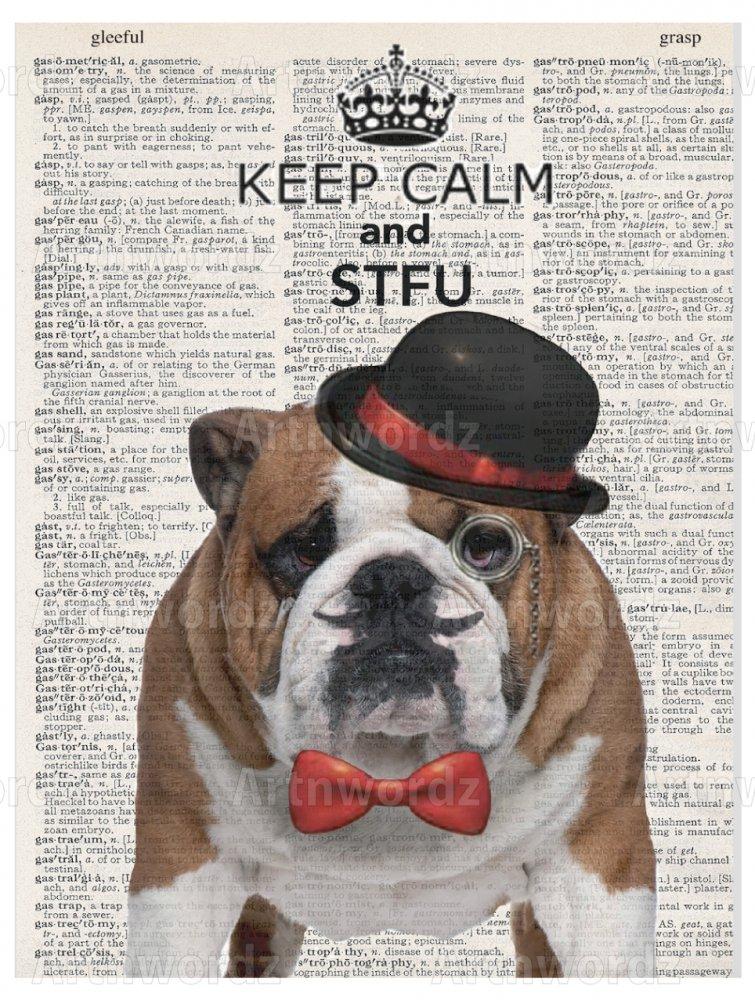 STFU Bulldog Paper