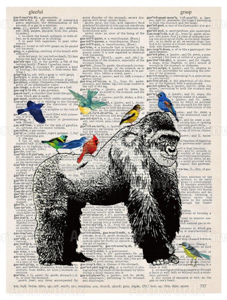 Gorilla Birds