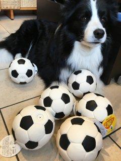 柔らかジャンボ・サッカーボール