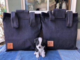 2WAYバッグ!・トートバッグとリュックに使い分けできます。(大サイズ)