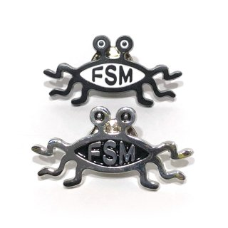 FSM Pin