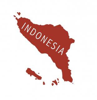 INDONESIA LINTONG LASUNA(インドネシア リントン ラスナ)