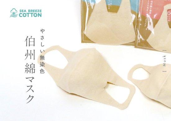 伯州綿マスク (大人用・幼児用)
