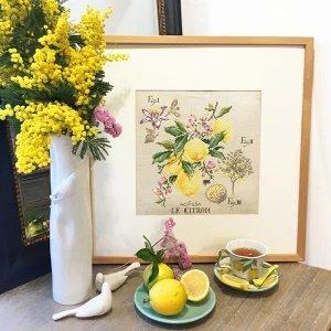 壁掛け 【リネン】Etude aux Citrons(レモン研究)クロスステッチセミキット
