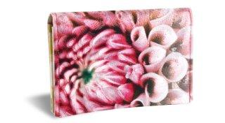 せと刺しゅう カードケース Gradation Dahlia yellow X pink ダリア イエローXピンク 名刺入れ