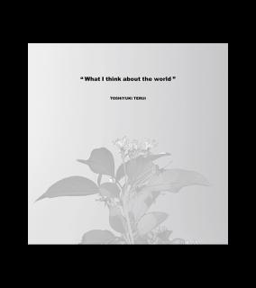 照井利幸『What I think about the world』[remaster] LP