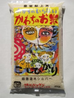茨城県河内町産 コシヒカリ 特別栽培米