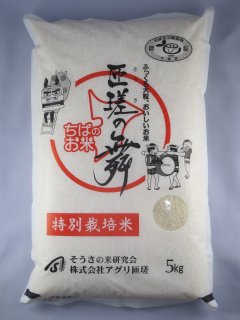 千葉県匝瑳市産 ふさこがね「匝瑳の舞」(そうさのまい) 特別栽培米