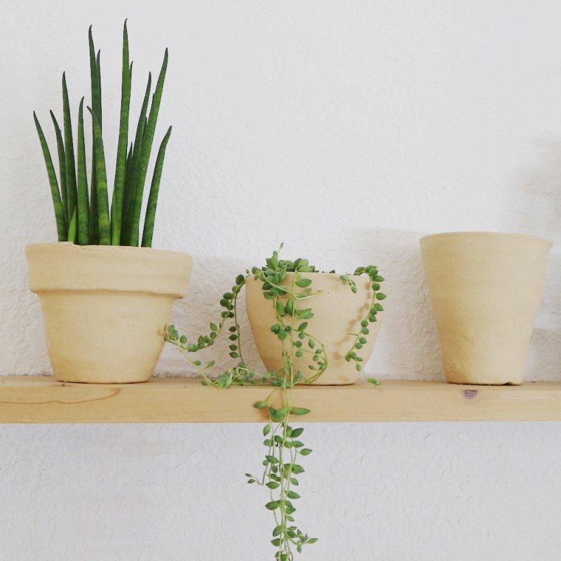 おしゃれ 植木鉢
