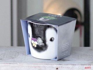 HANA & ANIMALS ハナ アンド アニマル 栽培キット ペンギン/ビオラ