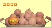 完熟安納芋 紅 コロコロ  5kg