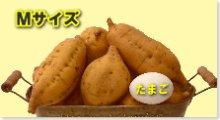 吊るし安納芋(黄金)Mサイズ 5�