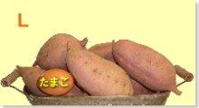 完熟安納芋 L 10kg
