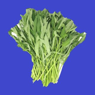 WATER SPINACH  パクブン  空芯菜 1kg