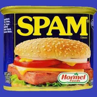 HORMEL SPAM REGULAR 24X340g CASE
