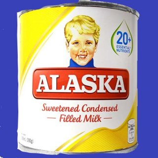 ALASKA CONDENSED MILK48x 300ml CASE