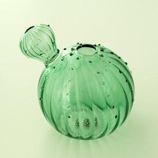 NL1002201114 Vase cactus 3