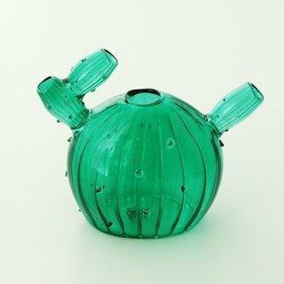 NL1002201116 Vase cactus 5