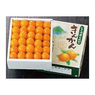 【完売】厳選品 2L級60個詰(税込 送料込)