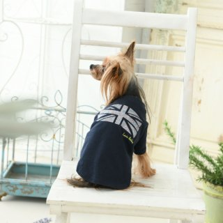 <img class='new_mark_img1' src='https://img.shop-pro.jp/img/new/icons14.gif' style='border:none;display:inline;margin:0px;padding:0px;width:auto;' />LAURA ASHLEY