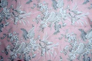 フランス新鳥柄 ピンク