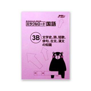 ミラクルロード 国語�B 文学史、詩、短歌、俳句、古文、漢文の知識