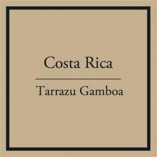 Costa Rica Tarrazu Gamboa (浅〜中煎り) 200g