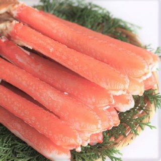 生大ずわい蟹 しゃぶしゃぶ用(バルダイ種)800g