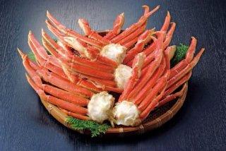 ボイルずわい蟹肩(オピリオ種)3kg