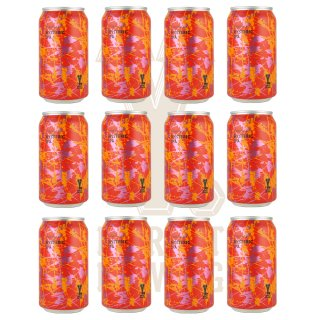 Y.MARKET Hysteric IPA ヒステリック IPA 12缶<img class='new_mark_img2' src='https://img.shop-pro.jp/img/new/icons25.gif' style='border:none;display:inline;margin:0px;padding:0px;width:auto;' />