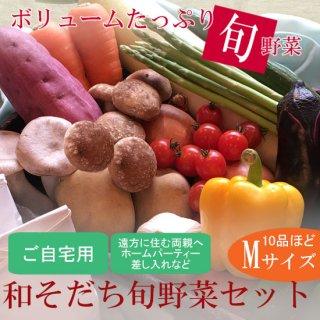 【ご自宅用】和そだち旬野菜セットMサイズ