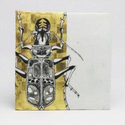 虫(B) 飾皿|井上雅子