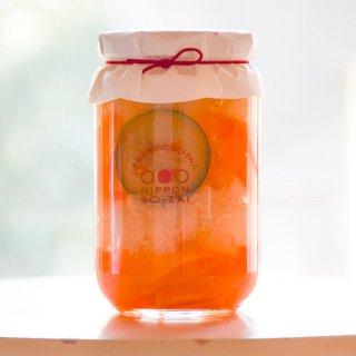 りぼん(大瓶)-徳島ぴクルス