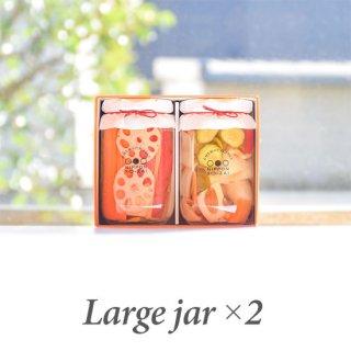徳島ぴクルス(大瓶)×2本ギフト