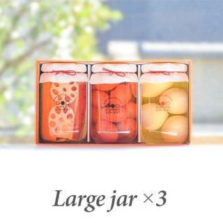 【送料無料】徳島ぴクルス(大瓶)×3本ギフト