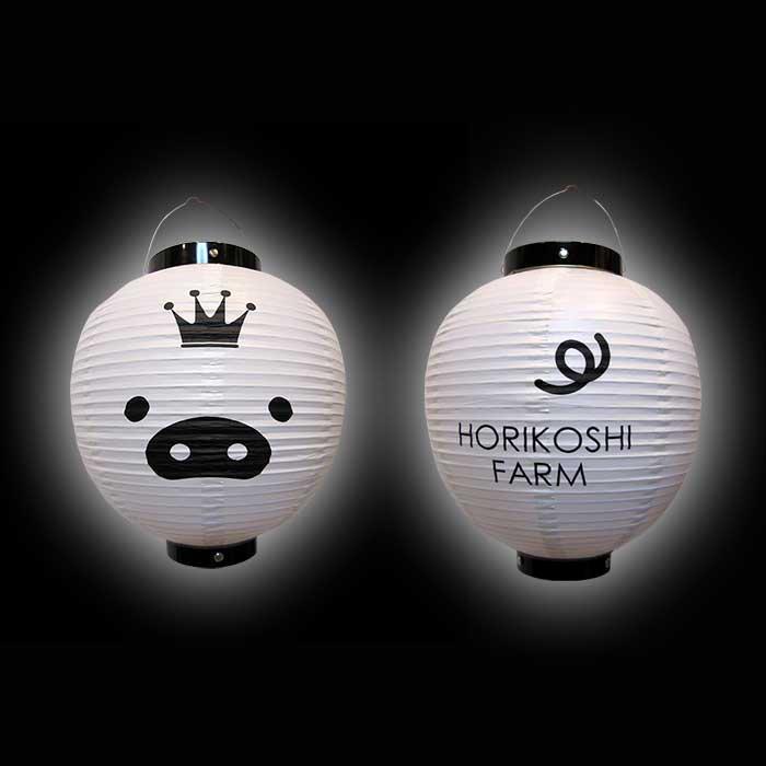 ◆キャンプ場の提灯 テントやバンガロー用の提灯  丸型中  LED電池灯つき ビニール提灯  前後2面型<70-B209-7-HORIKOSHI-W>