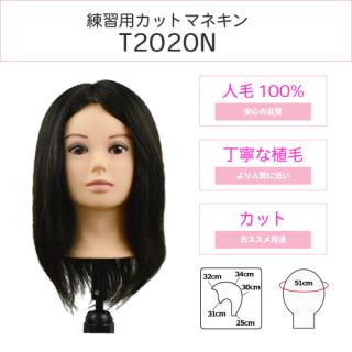 T2020N
