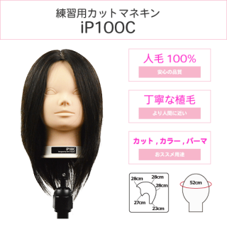 iP100C