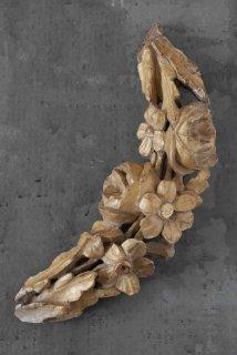 Fragment bois