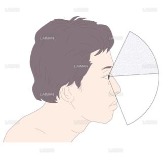 正常眼で見える範囲 (Sサイズ)