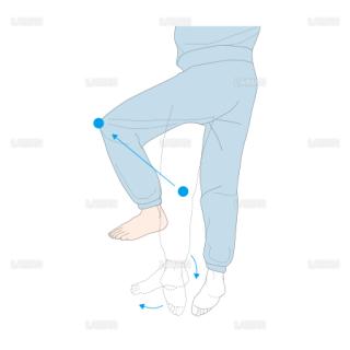 腹臥位から仰臥位 膝を動かす向き (Sサイズ)