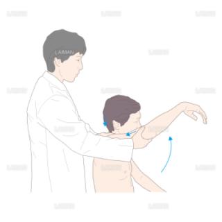 ニアーのインピンジメントテスト (Mサイズ)