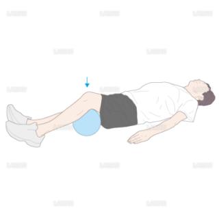 下肢・体幹筋力増強訓練 大腿四頭筋セッティング(Mサイズ)