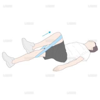 下肢・体幹筋力増強訓練 股関節屈伸運動(Mサイズ)